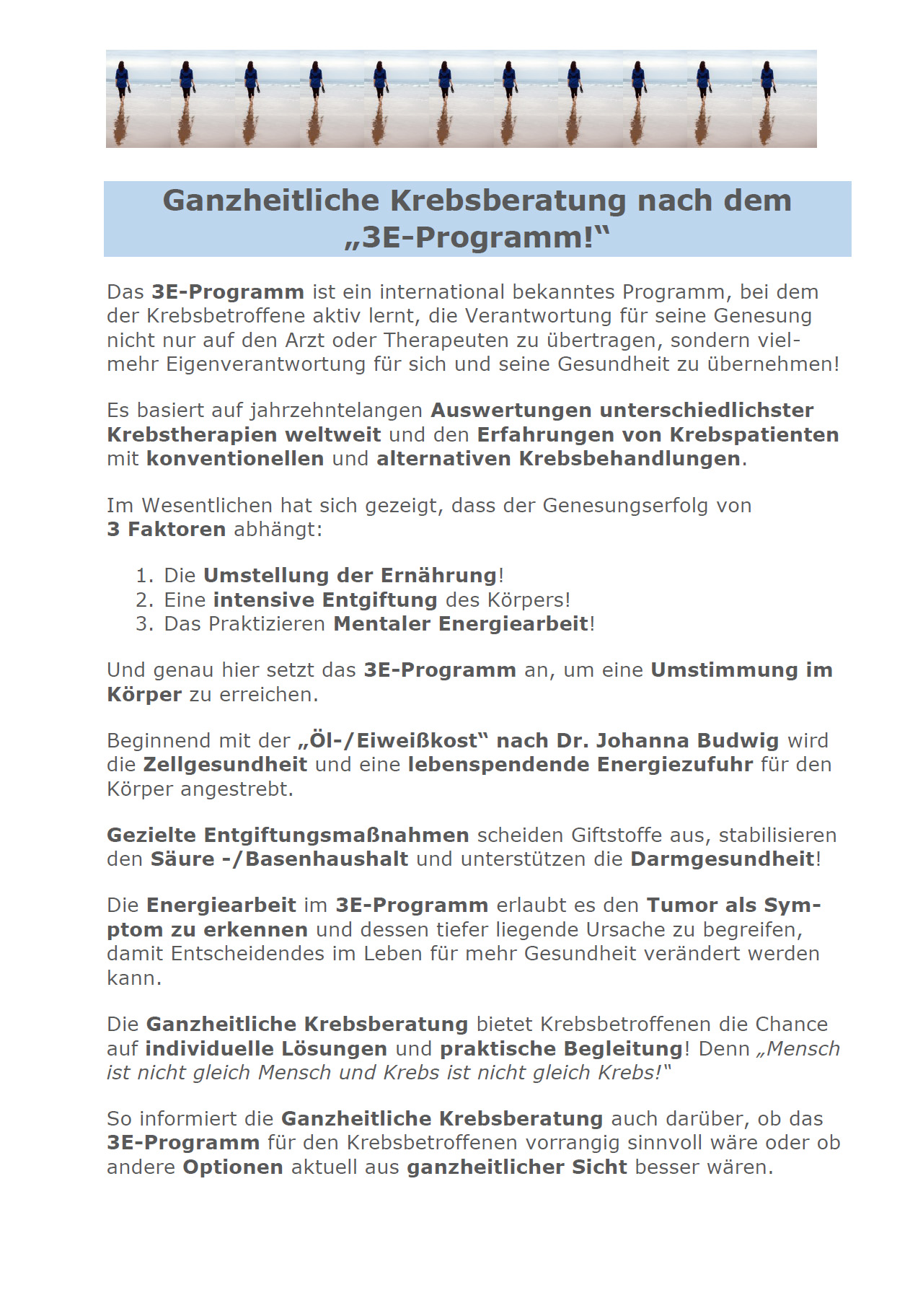 3-E-Programm